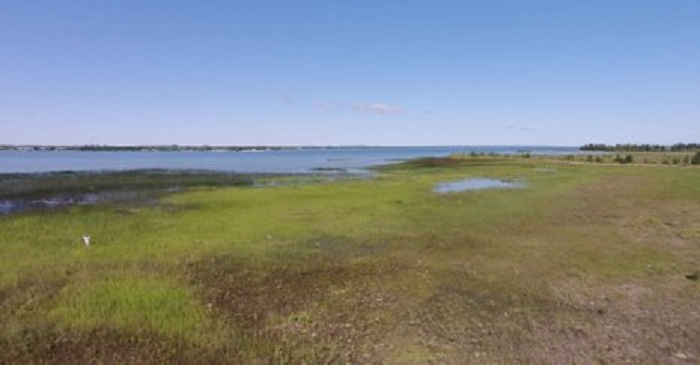 Comprehensively mapped for the first time, Great Lakes wetlands, like this one in Cheboygan, Mich., provide important habitat and resources.